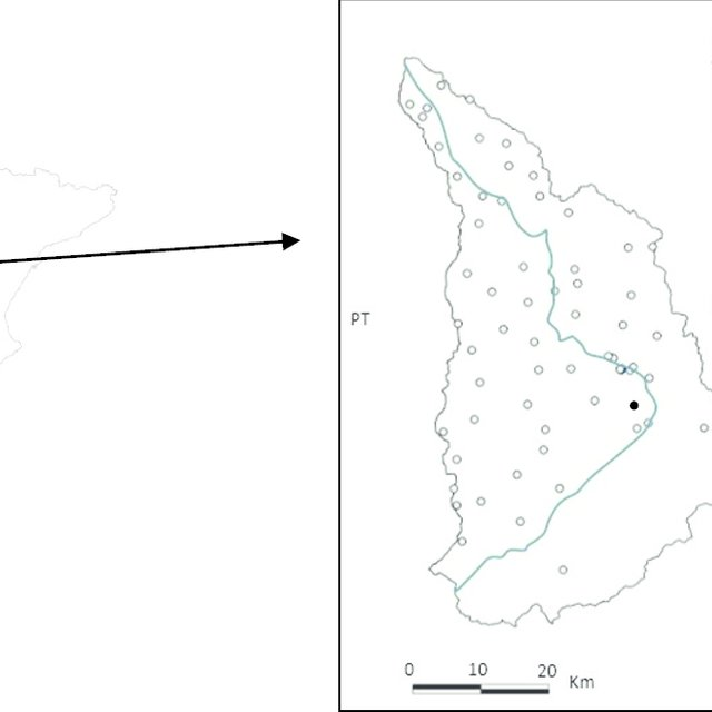 (PDF) Sequential Gaussian Simulation of Uranium Spatial