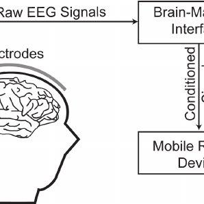 The schematic diagram of the proposed Brain-Machine