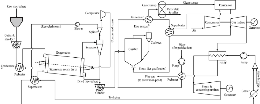 Process flow diagram of the proposed integrated-processes