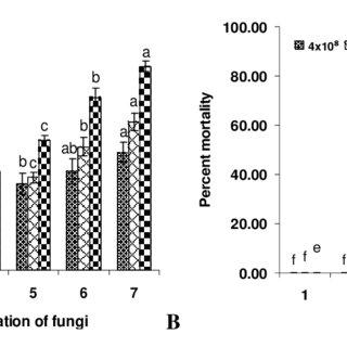 (PDF) Microbial Control of Maize Army Worm, Mythimna
