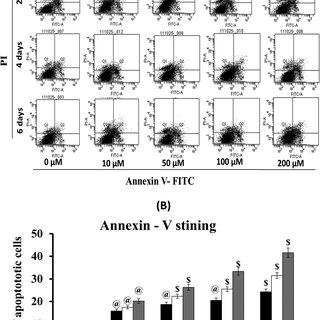 (PDF) Capsaicin inhibits the adipogenic differentiation of