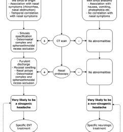 specific algorithm for thoroughly investigating the aetiology of facial pain  [ 850 x 1655 Pixel ]