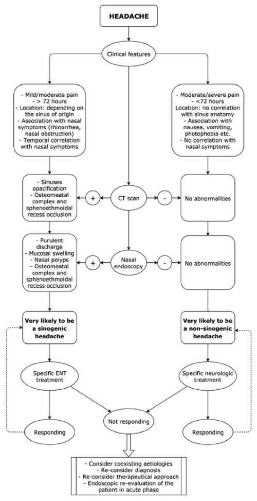 small resolution of specific algorithm for thoroughly investigating the aetiology of facial pain