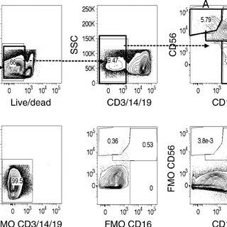 (PDF) Alterations in Natural Killer Cell Receptor Profiles