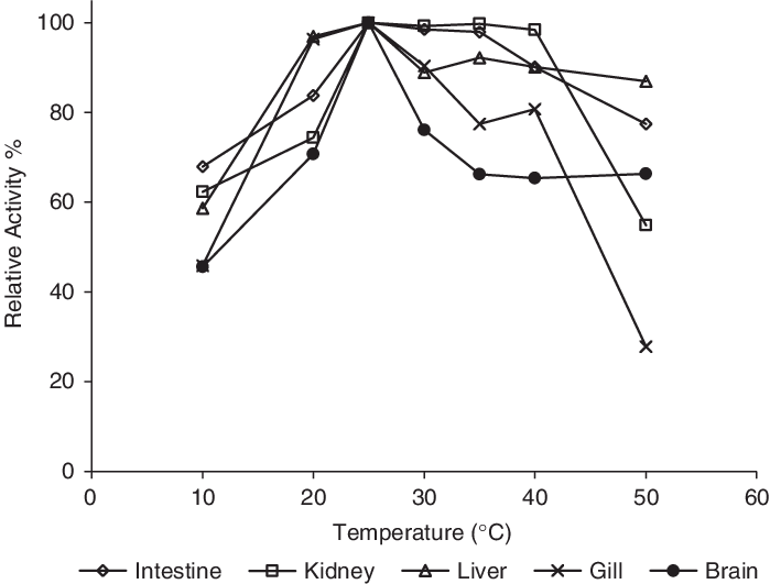 The effect of temperature on catalase. Effects of