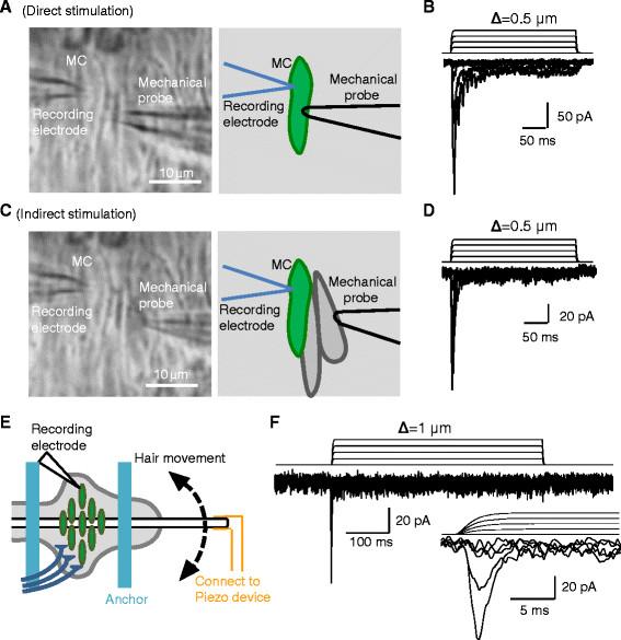pin curl diagram kicker wiring diagrams machinedance39s hair setting barrel roll more online
