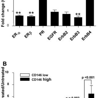 A: analysis of ER, PR and Erb receptors in CD146