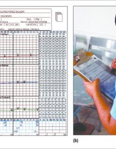 The augmented patient chart system  produces physical digital nurse   sheet also rh researchgate