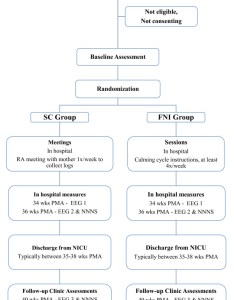 Study flow chart abbreviations ca corrected age ces  center for epidemiological studies depression scale eeg electroencephalogram fni also rh researchgate