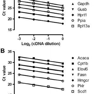 Gene expression analysis of the fatty acid metabolism