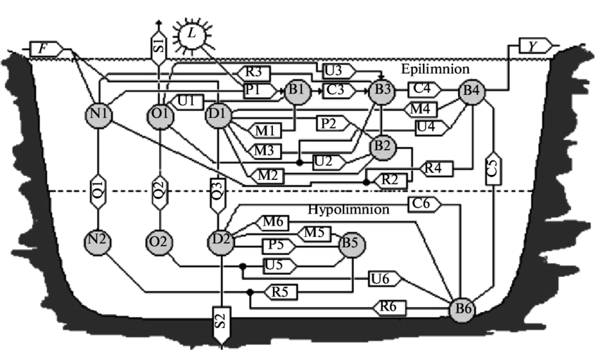 Control flow chart of a twoodimensional model of lake