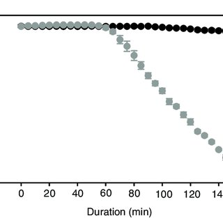 (PDF) Anaemia adjusts aerobic physiology of snapper