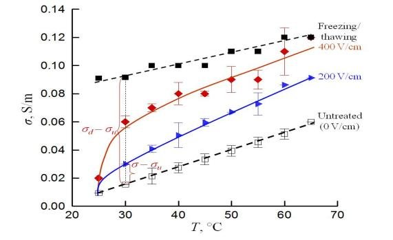 Evolution of the electrical conductivity (σ) of grape
