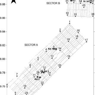 (PDF) Azooxanthellate Madracis coral communities off San