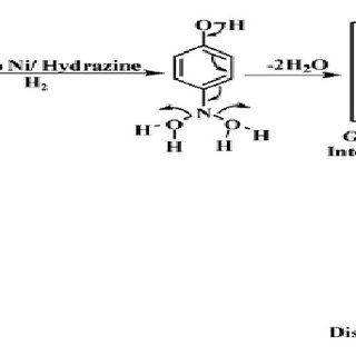 Schematic mechanism for conversion of p-nitrophenol to p