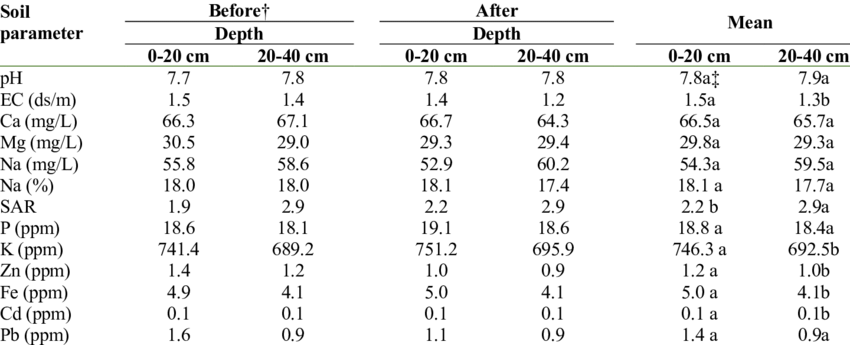 Soil physical and chemical properties at two depths before