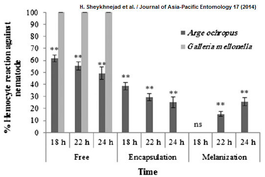 Hi, Does anyone know how to make multiple bar sets graphs
