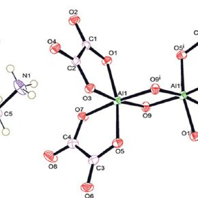 Among four oxygen atoms from each oxalate group, two atoms