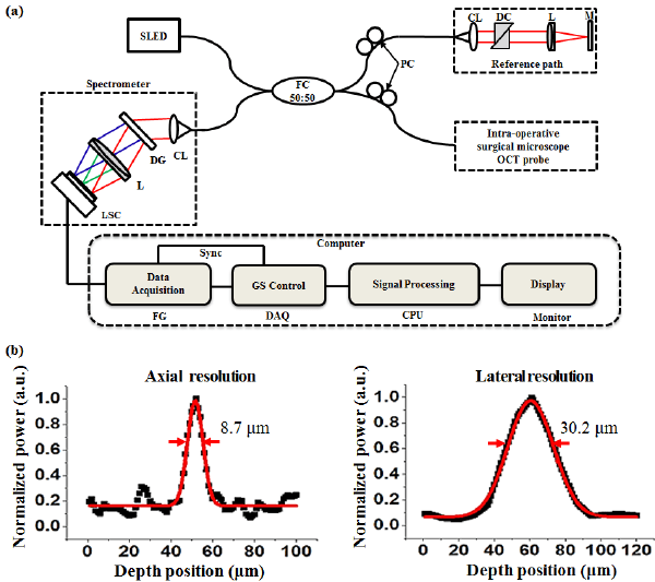 Schematic and resolution of the real-time SD-OCT. (a