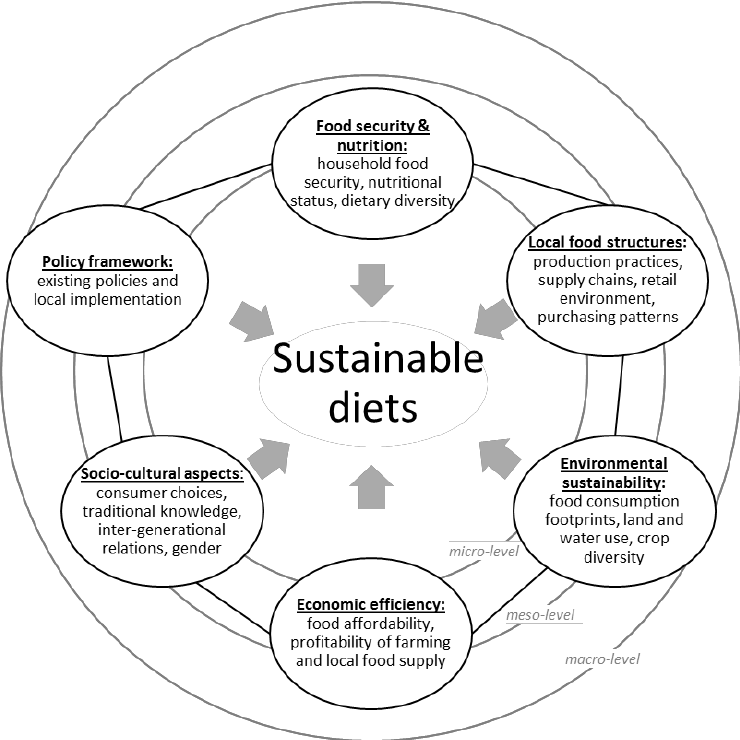 Research framework for exploring sustainable diets in