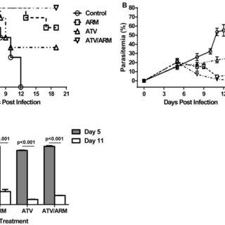 In response to various stimulus, transcription factors