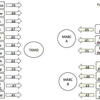 (PDF) Exploring Associations Between Motor Skill