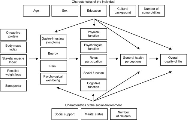 The Wilson and Cleary model of health-related quality of