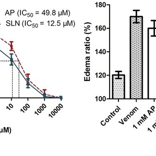 Inhibition of hyaluronidase activity of ECV by AP and SLN