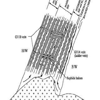 Simplified schematic diagram showing ore fluid path and