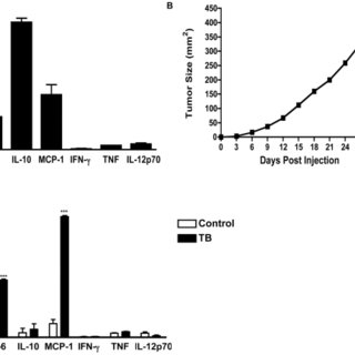 (A) Pro-inflammatory cytokine production by Panc02 cells