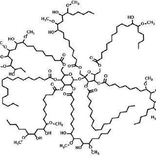 (PDF) Using flax fibers and glass fibers in a bio-based resin