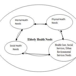 The conceptual framework of the elderly health need