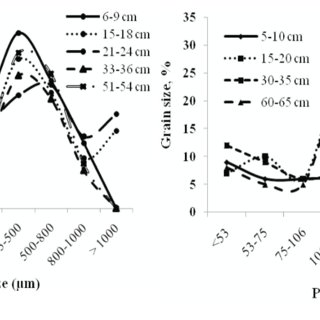 (PDF) The effect of sediment grain size on heavy metal content