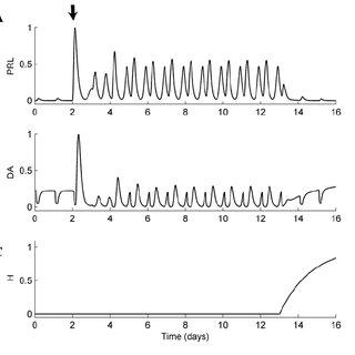 2 Diagram of hypothalamic nuclei. PVN-paraventricular