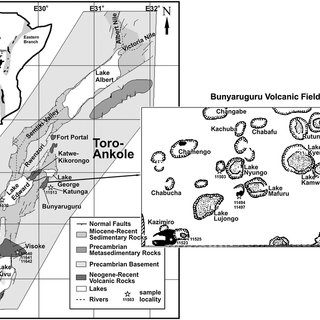 Nd-Sr isotopic composition of ultrapotassic rocks of the