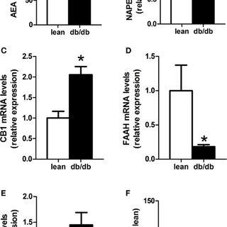 (PDF) Altered Gut Microbiota and Endocannabinoid System