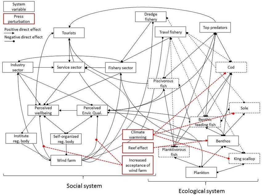 Social-ecological system of the Courseulles-sur-mer
