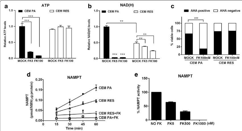 Characterization of FK866-resistant cells. a, b