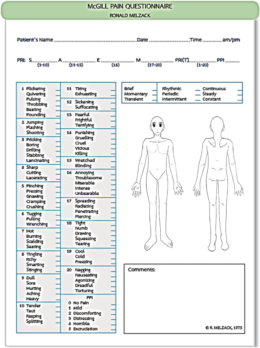 medium resolution of modified of mcgill pain questionnaire the mcgill pain questionnaire the descriptors fall into four