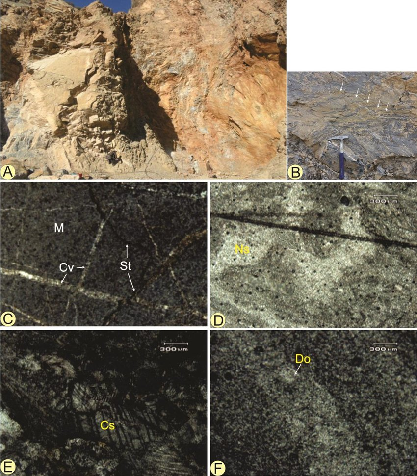 medium resolution of a field photograph of the limestone in khyber formation exposed in sur qamar quarry