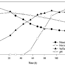 Profiles of nitrate, nitrite, and sulfate concentrations