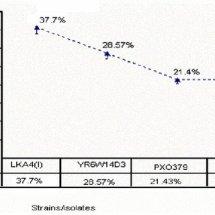 PDF Screening of Pakistani rice oryzae sativa