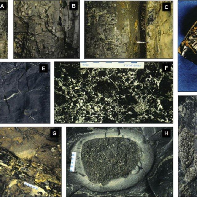 major types of palaeoproterozoic