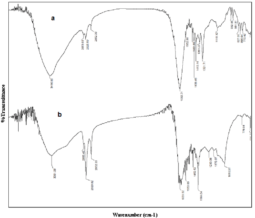FT-IR spectra of (a) A. aspera extract (b) Solid silver
