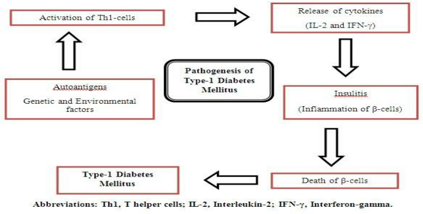 venn diagram type 1 and 2 diabetes turn signal relay wiring pathophysiology great installation of a schematic for pathogenesis mellitus rh researchgate net