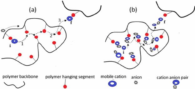 Pictorial representation of ion transport phenomenon