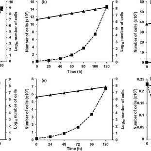 (PDF) Arsenic resistance and accumulation by two bacteria