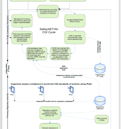 the safetynet rx cqi program adapted from boyle et al 5 cqi indicates [ 850 x 1057 Pixel ]
