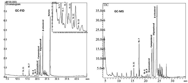 Chromatographic analysis by gas chromatography coupled to