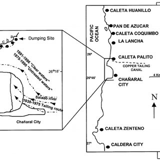 (PDF) Copper, copper mine tailings and their effect on